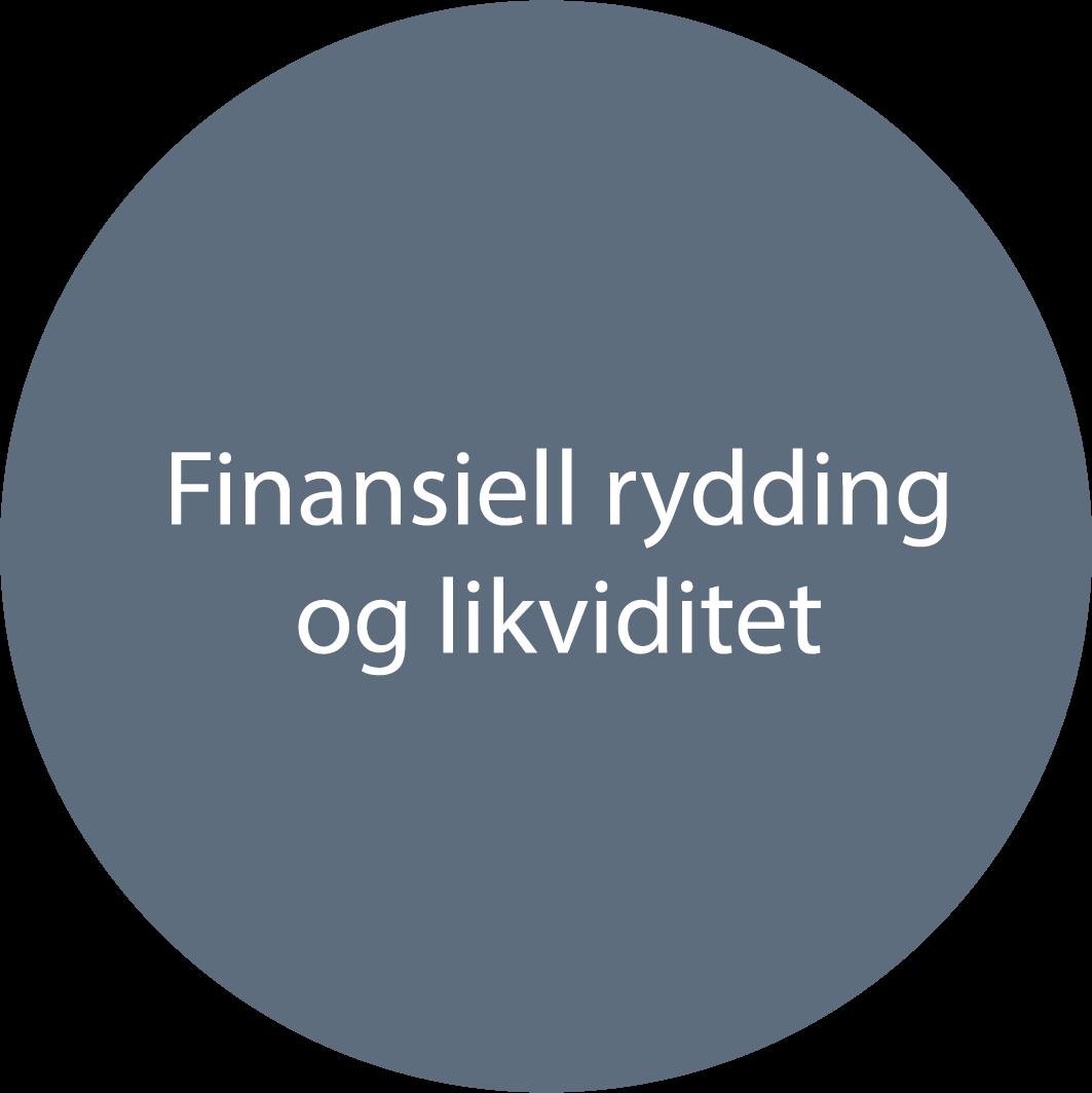 circkle_finansiell